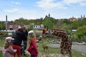zoo_jihlava_20170508_30