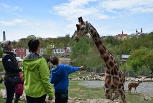 zoo_jihlava_20170508_35